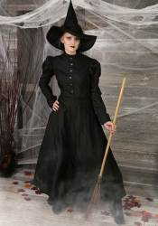 costume witch wicked deluxe womens halloween costumes adult west google homemade plus makeup halloweencostumes dog shirt hat wizard