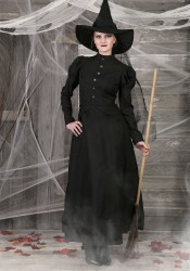 witch costume plus womens wicked deluxe costumes evil description halloweencostumes classic
