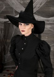 witch costume adult classic deluxe wicked plus womens costumes west halloweencostumes evil description
