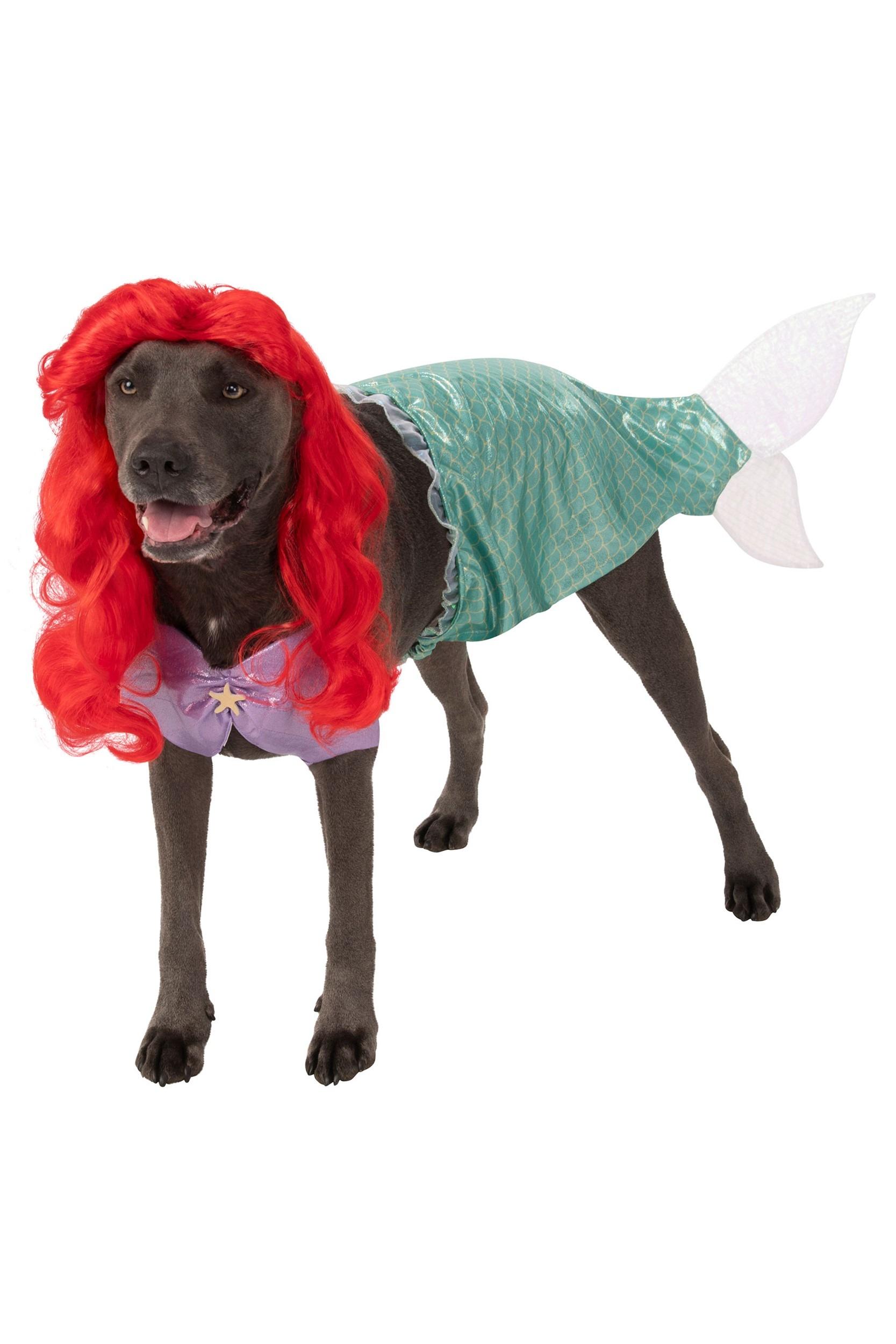 Little Mermaid Dog : little, mermaid, Little, Mermaid, Ariel, Costume