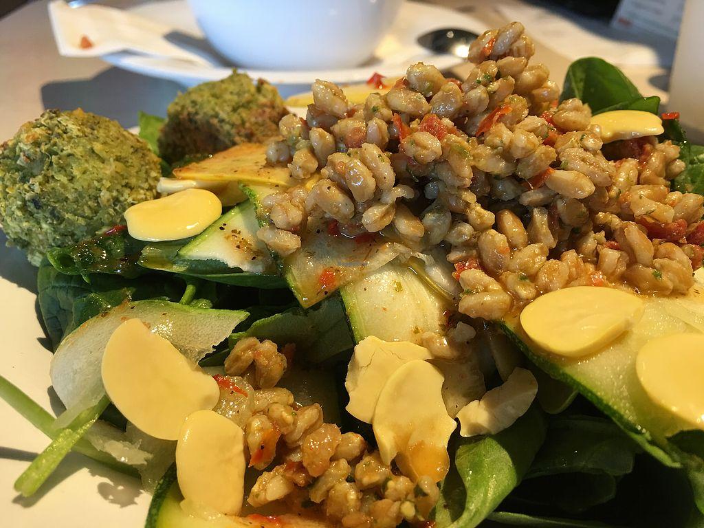 Zoes Kitchen Menu Nutrition Live Med Salad Dandk Organizer