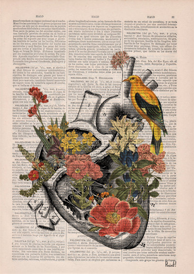 These anatomical drawings on old book pages are so gorgeous youre going to want to wallpaper