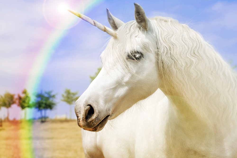 Watch a unicorn horn cyst get popped without screaming
