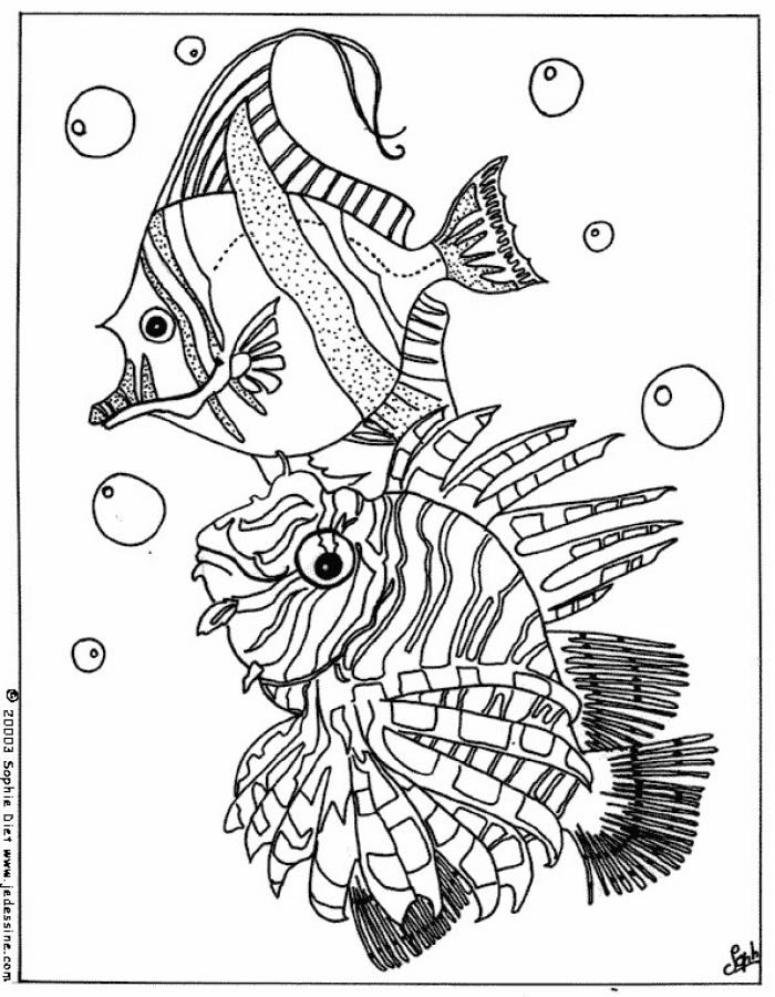 Striped Fish Coloring Pages
