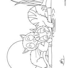 3 little kittens coloring page