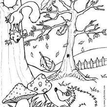 forest coloring page # 18