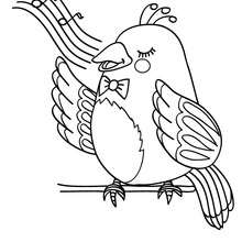 BIRD coloring pages - 90 free birds coloring pages & birds
