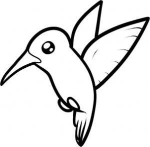 hummingbird draw step bird drawing line easy humming simple birds pretty hellokids
