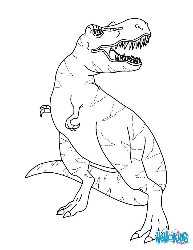 Pagina Para Colorear De Triceratops Para Triceratops Para