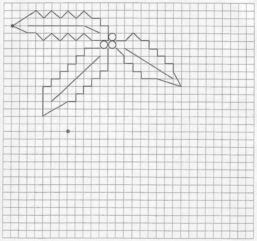draw graph paper online