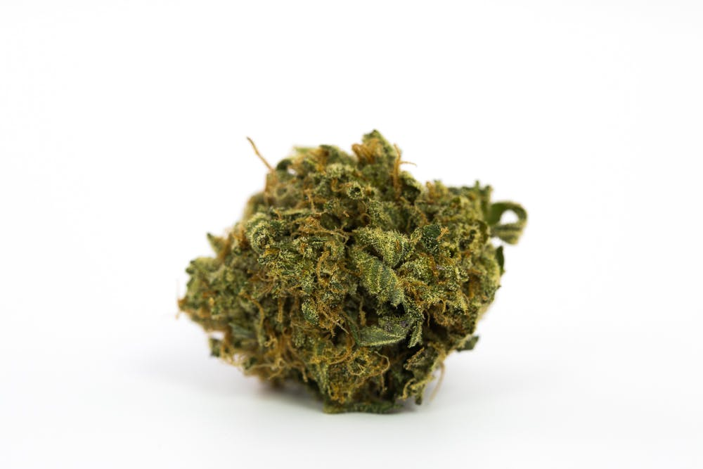 Blue Magoo Marijuana Strain The Strongest Strains on the Planet