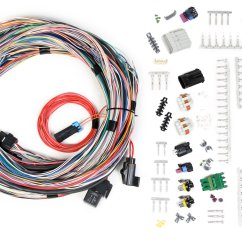 Holley Dominator Efi Wiring Diagram 220 Volt Relay 558 105 Unterminated Universal Main Harness