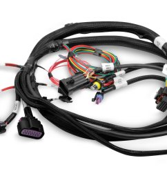 holley efi 558 414 terminator main harness holley projection wiring harness 558 414 terminator main harness [ 2500 x 1746 Pixel ]