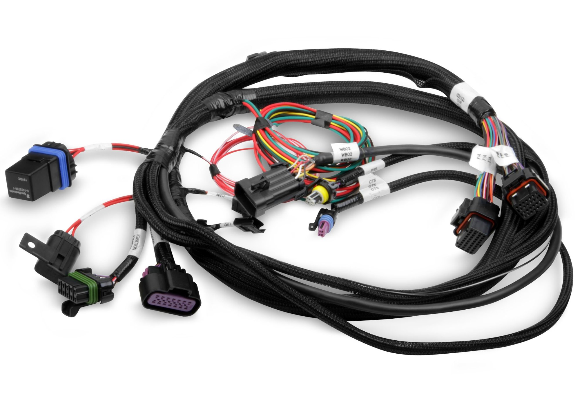 hight resolution of holley efi 558 414 terminator main harness holley projection wiring harness 558 414 terminator main harness
