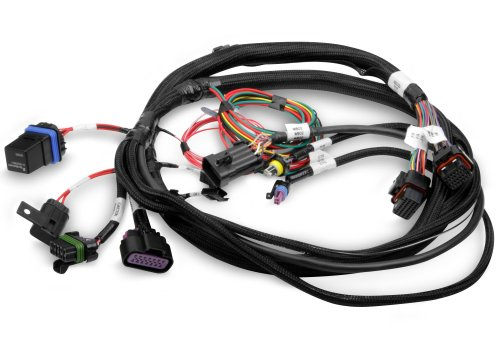 small resolution of holley efi 558 414 terminator main harness holley projection wiring harness 558 414 terminator main harness