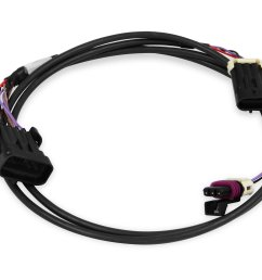 holley efi 558 431 crank cam ign harness fully terminated harness558 431 crank cam ign harness [ 4033 x 2969 Pixel ]
