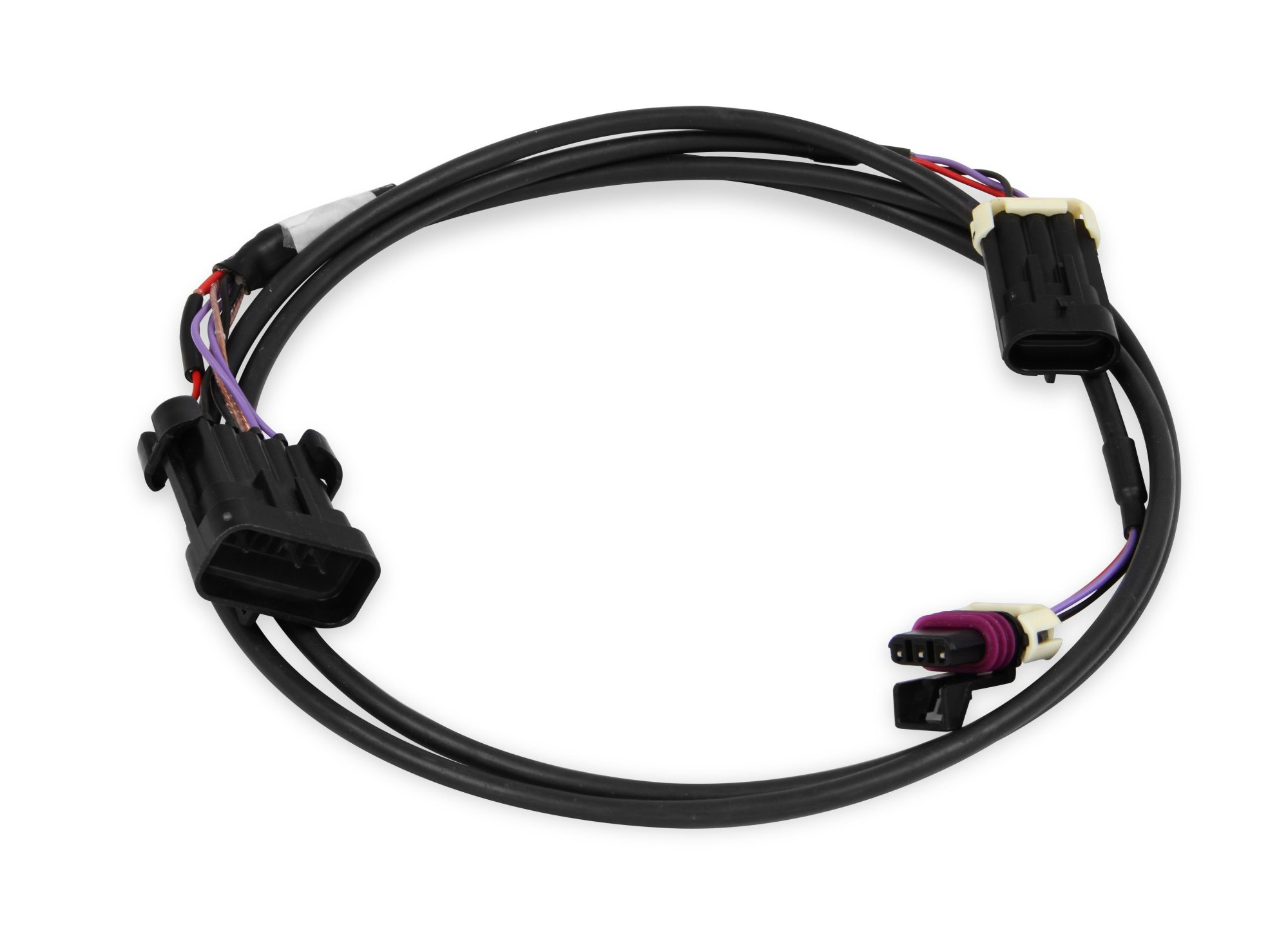 hight resolution of holley efi 558 431 crank cam ign harness fully terminated harness558 431 crank cam ign harness