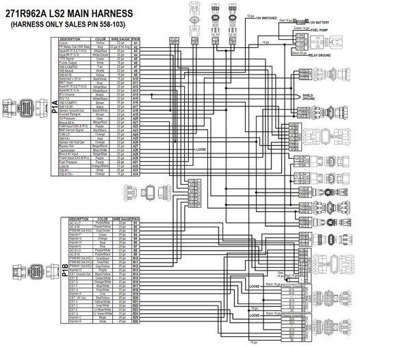 holley dominator efi wiring diagram cat5e b 558 103 ls2 3 7 58x 4x engine main harness 271r962 1a jpg