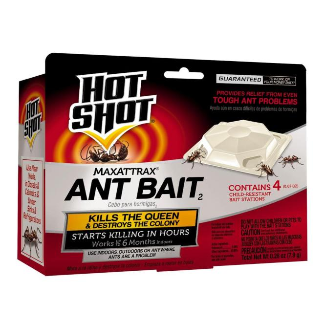 About Ant Bait