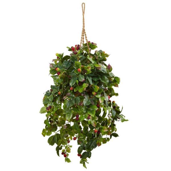 Natural Indoor Raspberry Plant Silk Hanging Basket
