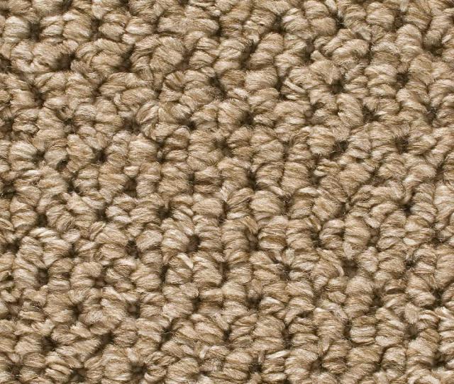 Trafficmaster Corkwood Color Tidewater Loop  Ft Carpet