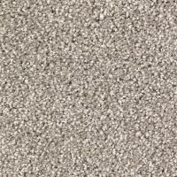 LifeProof Carpet Sample-Stylish Form - Color Mysterious ...