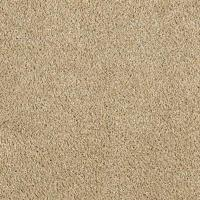 LifeProof Carpet Sample - Pagliuca I - Color Shell Beige ...
