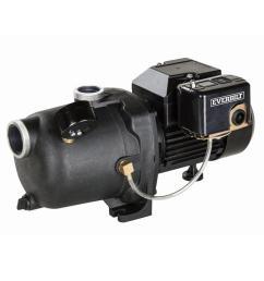 everbilt 1 2 hp shallow well jet pump [ 1000 x 1000 Pixel ]