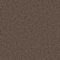 Platinum Plus Carpet Sample - Downshift I - Color Marshall ...
