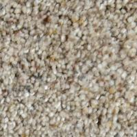 Home Decorators Collection Carpet Sample - Galore II ...