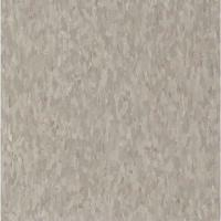 Armstrong Take Home Sample - Imperial Texture VCT Earth ...