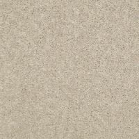 Shaw - Carpet Samples - Carpet & Carpet Tile - The Home Depot