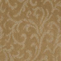 el dorado carpet  Floor Matttroy