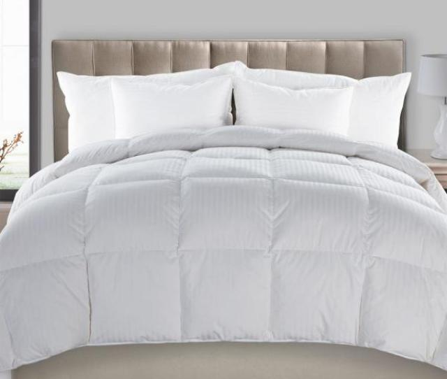 Downhome Ultra Down All Season Warmth White Full Queen Down Comforter