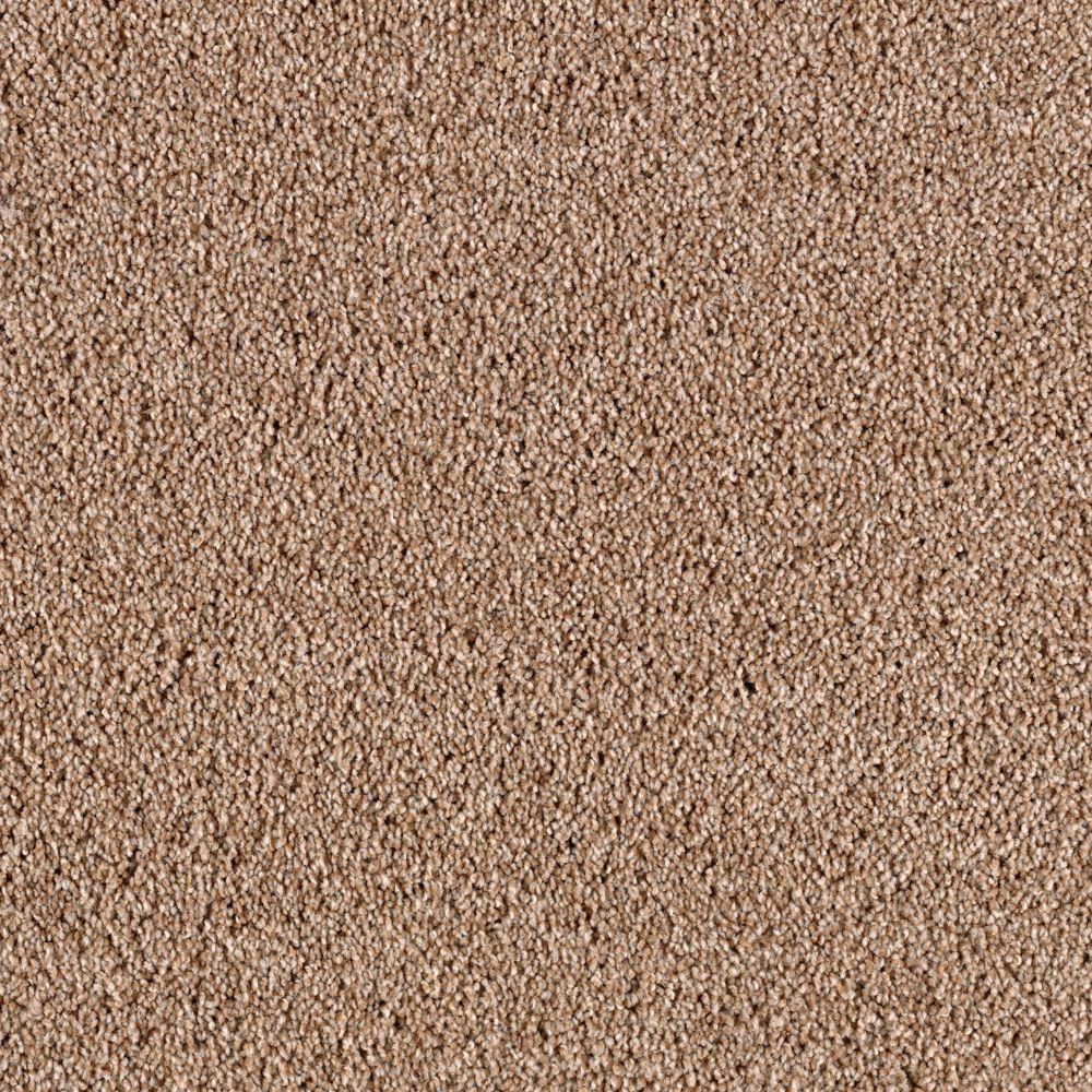 Wall To Wall Bathroom Carpet 5 X 8 Veterinariancolleges