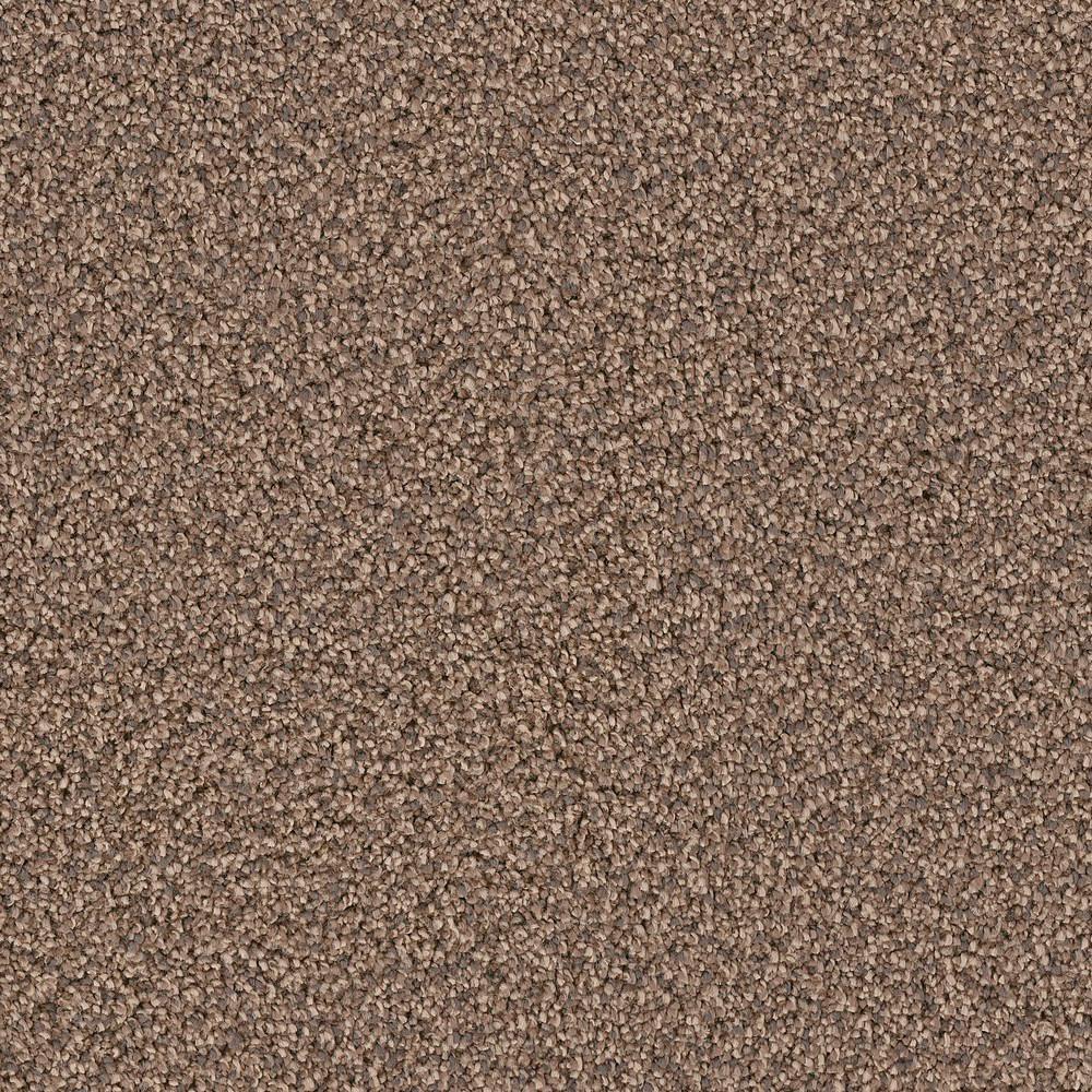 Platinum Plus Carpet Sample