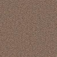 Platinum Plus Carpet Sample - Downshift II - Color Linwood ...