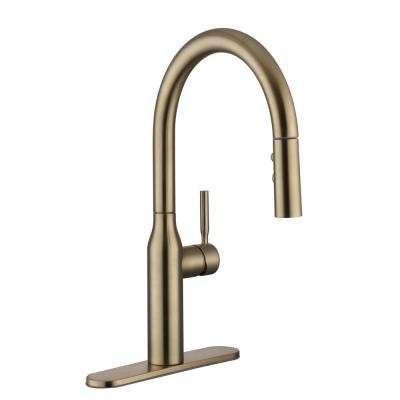 gold kitchen faucet discount cabinets nj brass faucets the home depot upson single handle pull down sprayer in matte