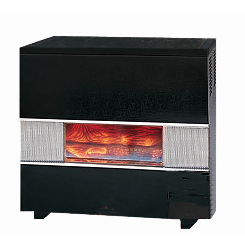 Williams 35,000 BTU Natural Gas Hearth Heater with Wall or