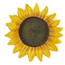 Sunflower Stepping Stone-hd5993-yl - Home Depot