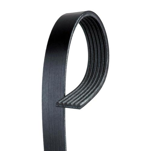 small resolution of standard serpentine belt