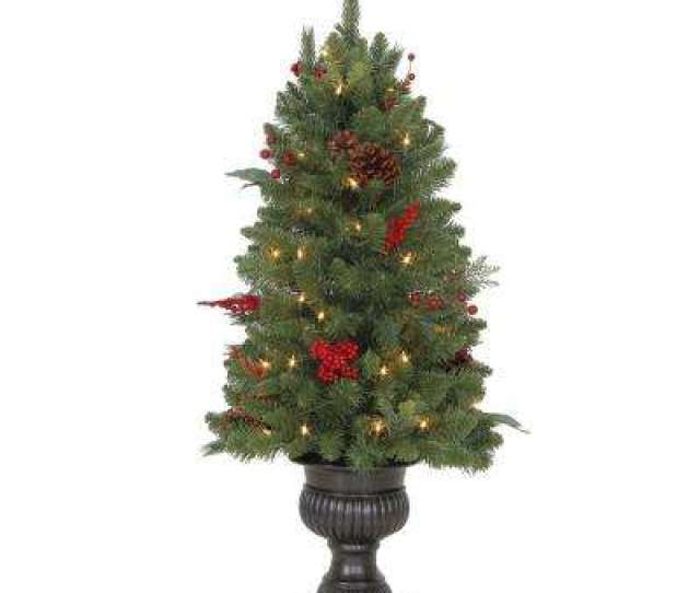 Pre Lit Winslow Fir Potted Artificial Christmas Tree With  Tips And
