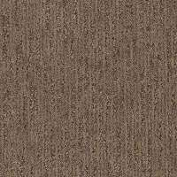 Pattern - Carpet - The Home Depot