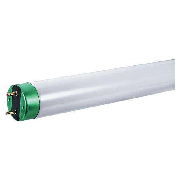 Philips 32-watt 4 Ft. Linear T8 Alto Fluorescent Tube Light Bulb Daylight 5000k 2-pack