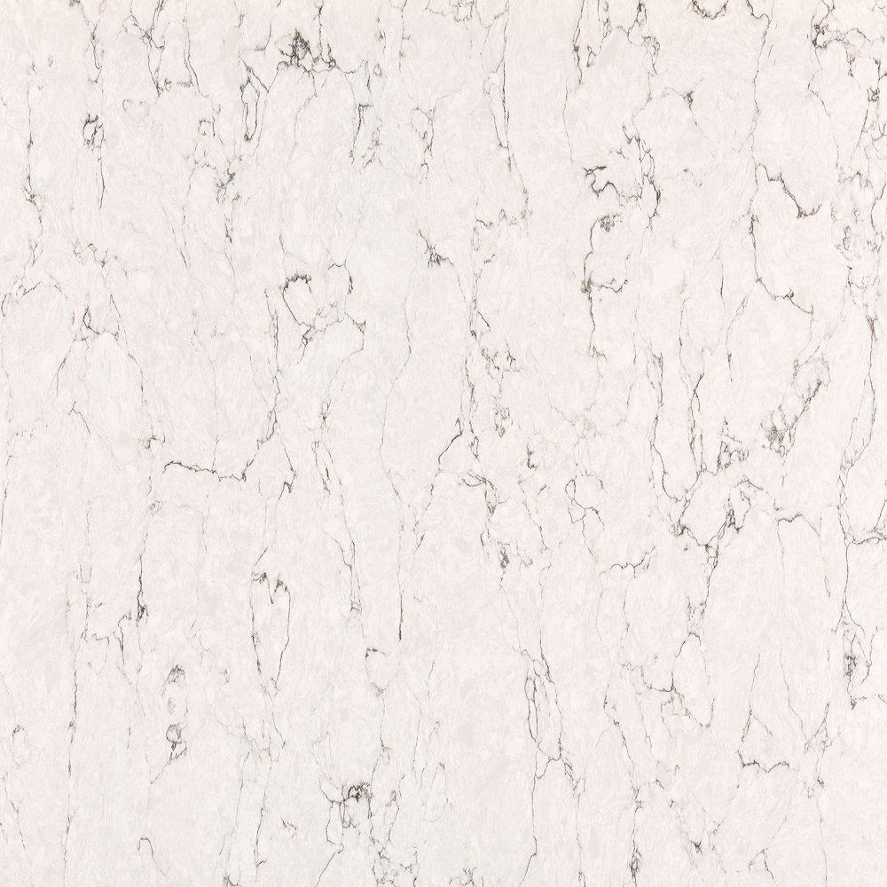 Silestone 2 in. x 4 in. Quartz Countertop Samples in White