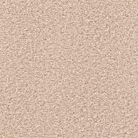 Platinum Plus Carpet Sample - Elite II - Color Oxford ...