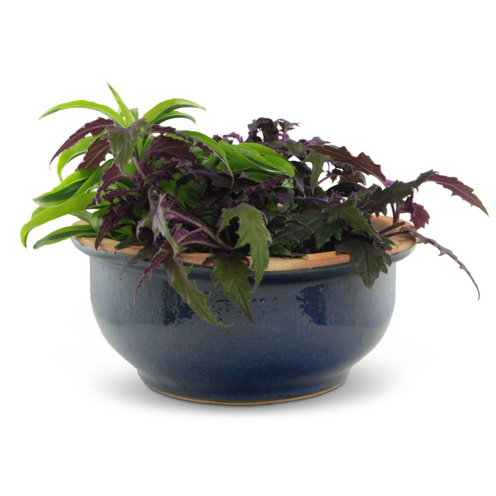 Pennington 15 in Blue Stoneware Imperial Color Bowl