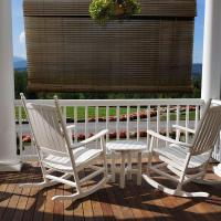 Chestnut Exterior Roll Up Patio Sun Shade with Valance ...