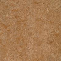 Marmoleum Click Cinch Loc Shitake 9.8 mm Thick x 11.81 in
