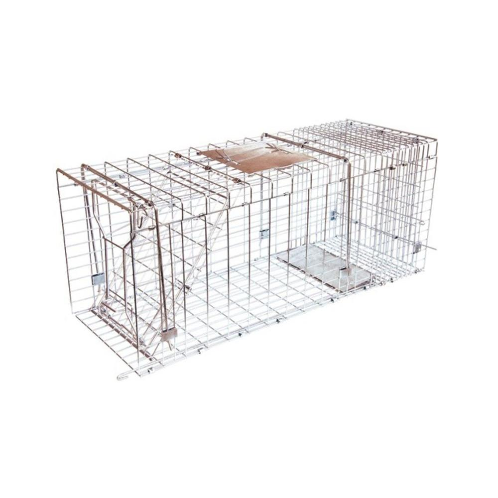 JT Eaton Answer Single Door Live Animal Cage Trap for